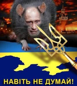 Putin-shur1